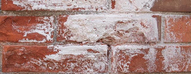 witte aanslag op muren Oss