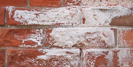 witte aanslag op muren Den Bosch